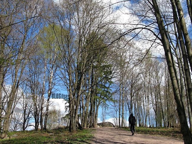 walk like a Finn in Finland by BLOGitse