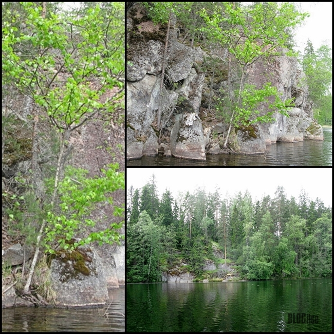 beautiful peaceful nature of Nuuksio Finland by BLOGitse
