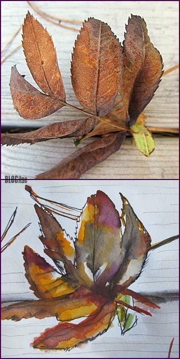 autumn 2 by BLOGitse