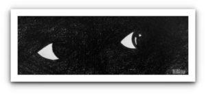 eyes in black by BLOGitse