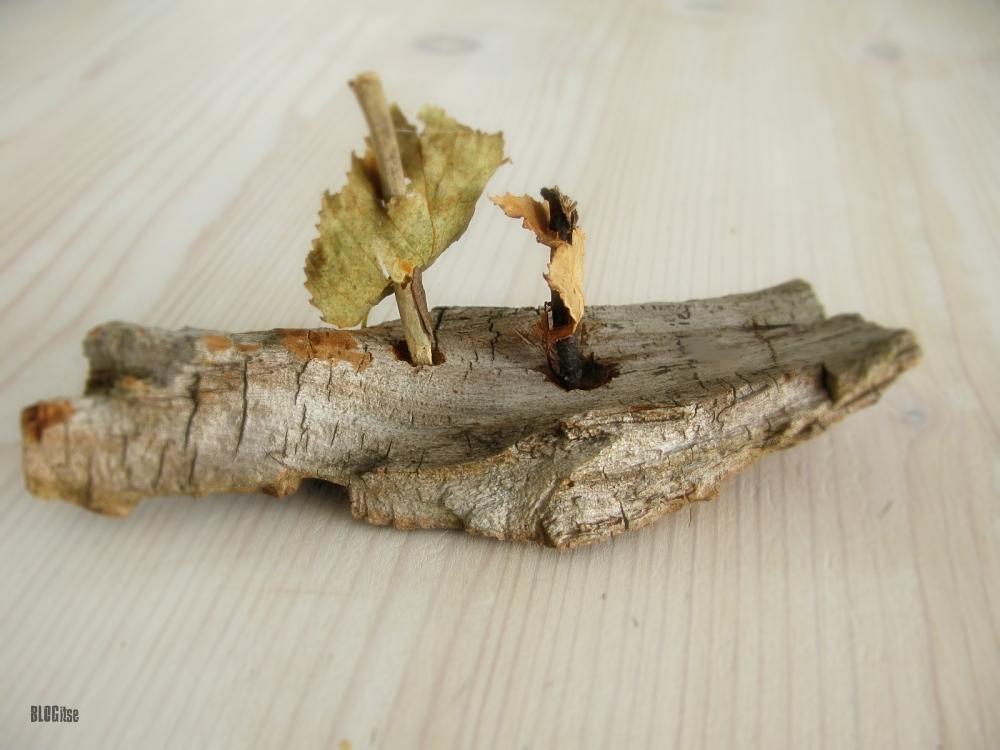 bark-boat-by-BLOGitse
