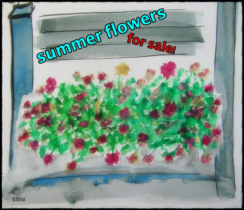 summer flowers for sale by BLOGitse
