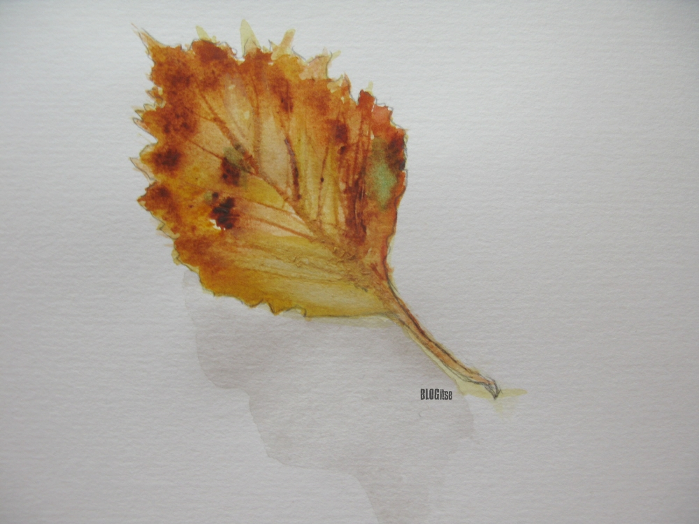 autumn leaf watercolor by BLOGitse
