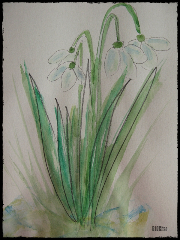 snowdrops watercolor by BLOGitse