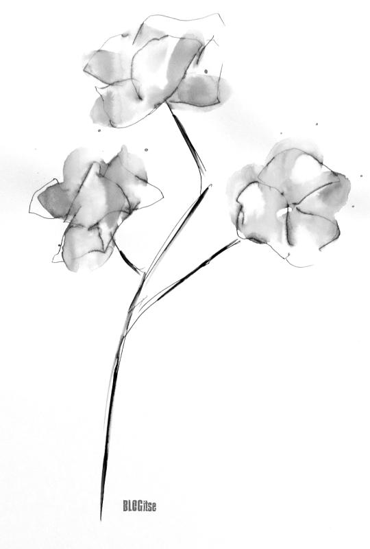bw 2. flower by BLOGitse