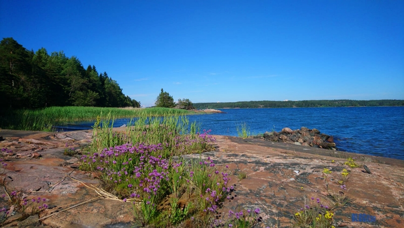 Happy midsummer mukavaa jussia by BLOGitse